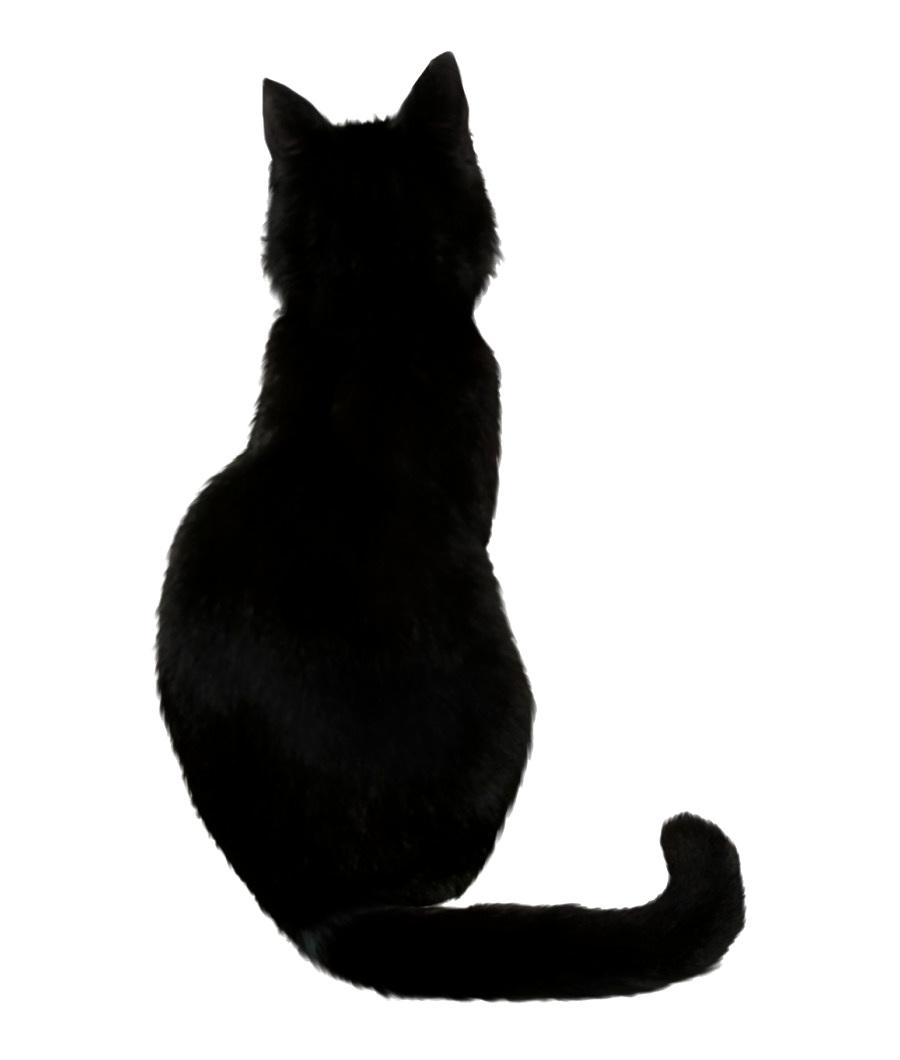 Сказка о добродетельной кошке